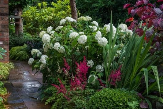 wpid10251-Brooke-Cottage-in-August-GBRK044-nicola-stocken.jpg