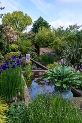 wpid10325-Field-House-Garden-in-May-GFIE011-nicola-stocken.jpg