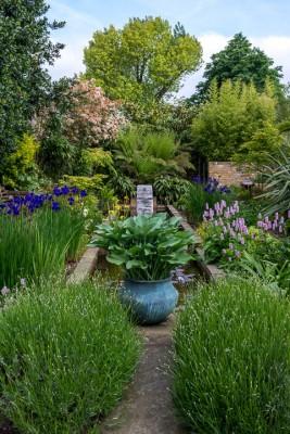 wpid10327-Field-House-Garden-in-May-GFIE012-nicola-stocken.jpg