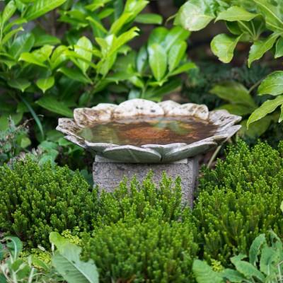 wpid10341-Field-House-Garden-in-May-GFIE019-nicola-stocken.jpg