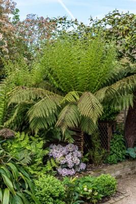wpid10343-Field-House-Garden-in-May-GFIE020-nicola-stocken.jpg