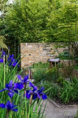 wpid10354-Field-House-Garden-in-May-GFIE025-nicola-stocken.jpg