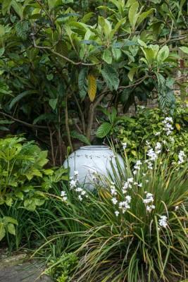 wpid10356-Field-House-Garden-in-May-GFIE026-nicola-stocken.jpg