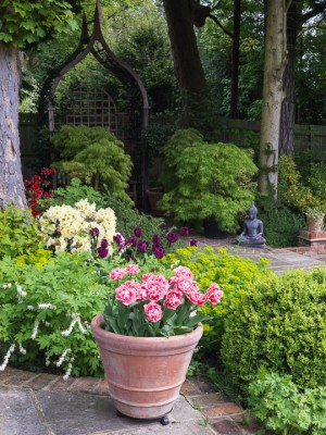 wpid10523-Garden-Lodge-in-Spring-GGLO064-nicola-stocken.jpg