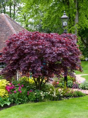 wpid10537-Garden-Lodge-in-Spring-GGLO071-nicola-stocken.jpg