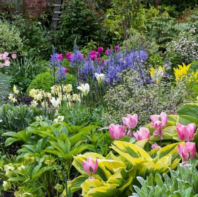 wpid10549-Garden-Lodge-in-Spring-GGLO077-nicola-stocken.jpg