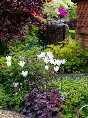 wpid10551-Garden-Lodge-in-Spring-GGLO078-nicola-stocken.jpg
