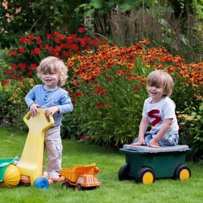 wpid10767-Late-Summer-Family-Garden-GLAU002-nicola-stocken.jpg