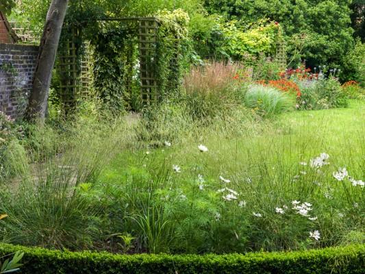 wpid10781-Late-Summer-Family-Garden-GLAU009-nicola-stocken.jpg