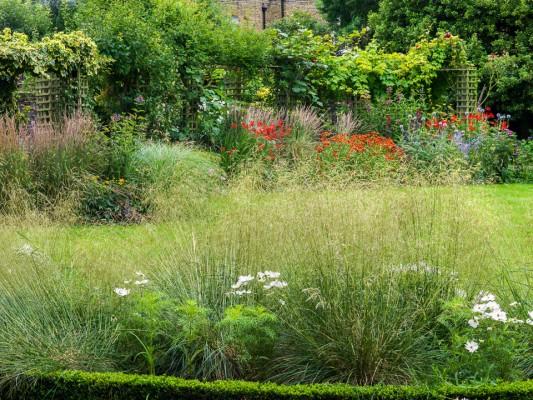 wpid10783-Late-Summer-Family-Garden-GLAU010-nicola-stocken.jpg