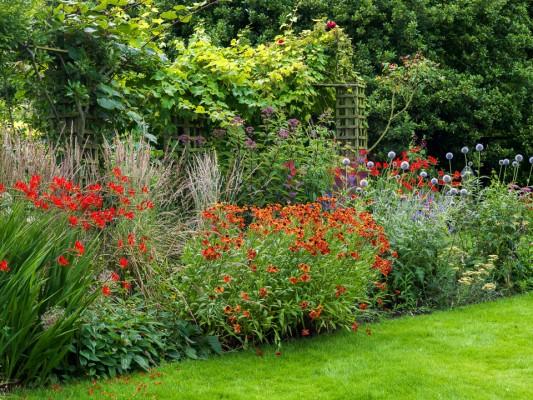 wpid10787-Late-Summer-Family-Garden-GLAU012-nicola-stocken.jpg