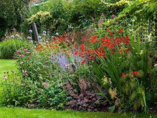 wpid10789-Late-Summer-Family-Garden-GLAU013-nicola-stocken.jpg