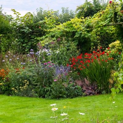 wpid10791-Late-Summer-Family-Garden-GLAU014-nicola-stocken.jpg