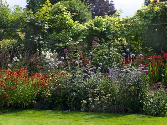 wpid10793-Late-Summer-Family-Garden-GLAU015-nicola-stocken.jpg