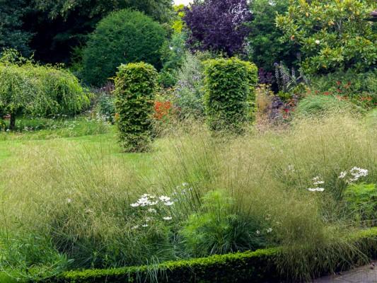 wpid10795-Late-Summer-Family-Garden-GLAU016-nicola-stocken.jpg