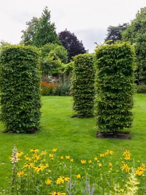 wpid10797-Late-Summer-Family-Garden-GLAU017-nicola-stocken.jpg