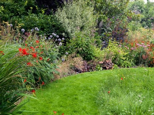 wpid10799-Late-Summer-Family-Garden-GLAU018-nicola-stocken.jpg