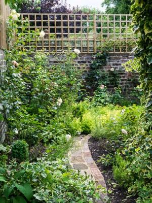 wpid10803-Late-Summer-Family-Garden-GLAU020-nicola-stocken.jpg
