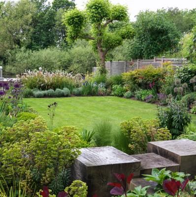 wpid11039-Perfect-Lawns-GOCK113-nicola-stocken.jpg