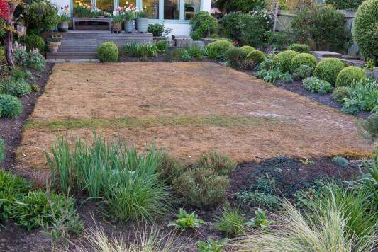 wpid11045-Perfect-Lawns-GOCK265-nicola-stocken.jpg