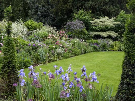 wpid11067-Perfect-Lawns-GSTG010-nicola-stocken.jpg