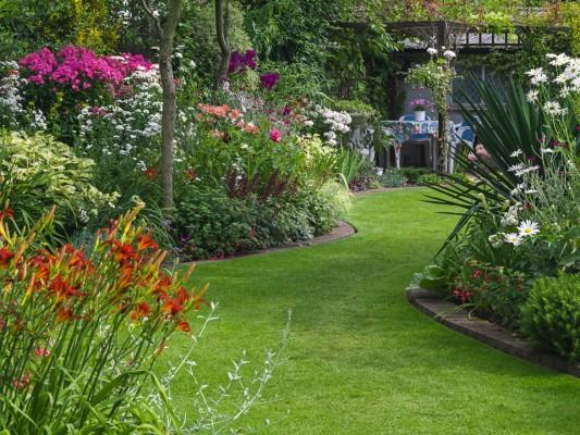 wpid11075-Perfect-Lawns-GBYF046-nicola-stocken.jpg