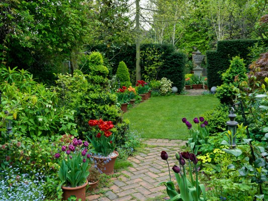 wpid11083-Perfect-Lawns-GTHO023-nicola-stocken.jpg