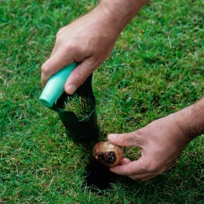 wpid11109-Perfect-Lawns-FGRA015-nicola-stocken.jpg