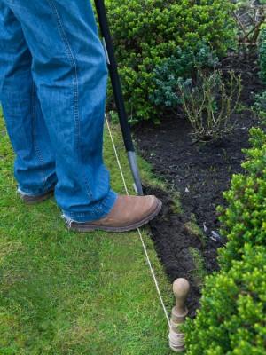 wpid11115-Perfect-Lawns-FGRA011-nicola-stocken.jpg