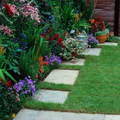 wpid11123-Perfect-Lawns-DPAU042-nicola-stocken.jpg
