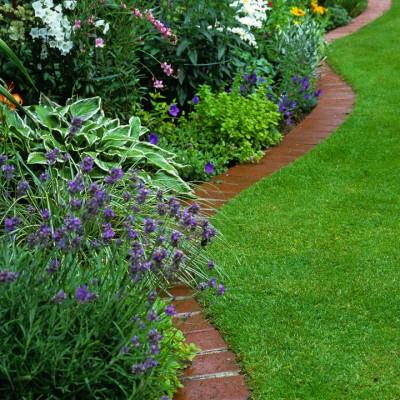 wpid11127-Perfect-Lawns-AEDG001-nicola-stocken.jpg