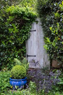 wpid11171-Quarry-Cottage-in-May-GQUA035-nicola-stocken.jpg