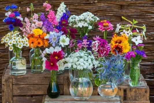 wpid11327-Cut-Summer-Flowers-GORB038-nicola-stocken.jpg