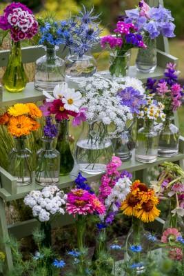 wpid11329-Cut-Summer-Flowers-GORB063-nicola-stocken.jpg