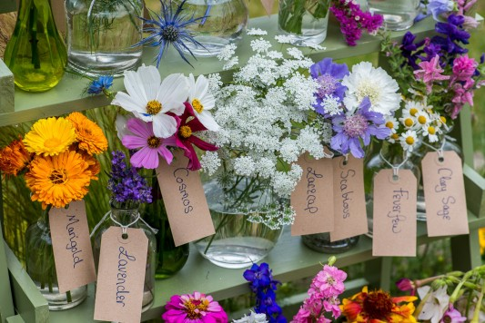 wpid11333-Cut-Summer-Flowers-GORB069-nicola-stocken.jpg