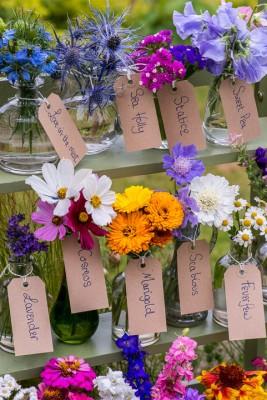 wpid11335-Cut-Summer-Flowers-GORB071-nicola-stocken.jpg