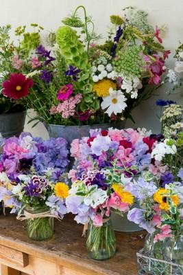 wpid11337-Cut-Summer-Flowers-GORB014-nicola-stocken.jpg
