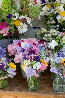 wpid11339-Cut-Summer-Flowers-GORB015-nicola-stocken.jpg