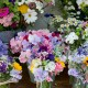 wpid11339-Cut-Summer-Flowers-GORB015-nicola-stocken.jpg thumbnail