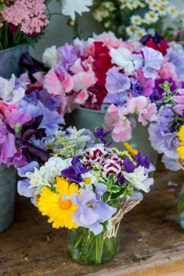 wpid11341-Cut-Summer-Flowers-GORB017-nicola-stocken.jpg