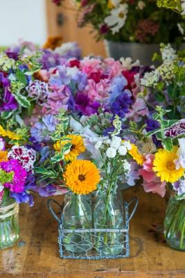 wpid11343-Cut-Summer-Flowers-GORB019-nicola-stocken.jpg