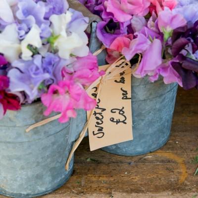 wpid11347-Cut-Summer-Flowers-GORB021-nicola-stocken.jpg