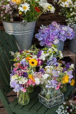 wpid11351-Cut-Summer-Flowers-GORB029-nicola-stocken.jpg