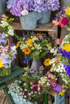 wpid11353-Cut-Summer-Flowers-GORB030-nicola-stocken.jpg