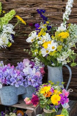 wpid11355-Cut-Summer-Flowers-GORB031-nicola-stocken.jpg