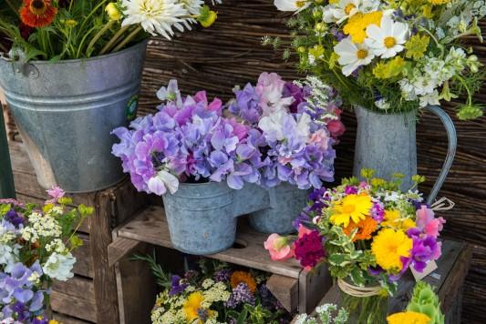 wpid11357-Cut-Summer-Flowers-GORB032-nicola-stocken.jpg
