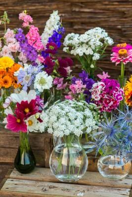 wpid11363-Cut-Summer-Flowers-GORB040-nicola-stocken.jpg