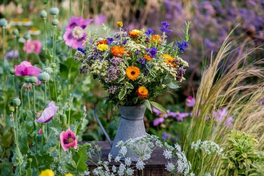 wpid11397-Cut-Summer-Flowers-GORB073-nicola-stocken.jpg