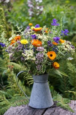 wpid11399-Cut-Summer-Flowers-GORB075-nicola-stocken.jpg