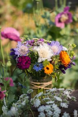 wpid11401-Cut-Summer-Flowers-GORB077-nicola-stocken.jpg